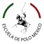 PSM Logo Square