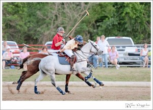 Darlington Polo Club